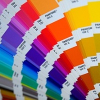 Who Creates Color Trends?