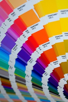 Who Creates Color Trends