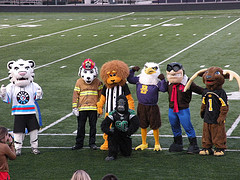 What do School Colors and Mascots Represent