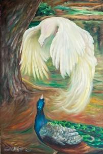 Peacock Tango! 40x60 Hi Res